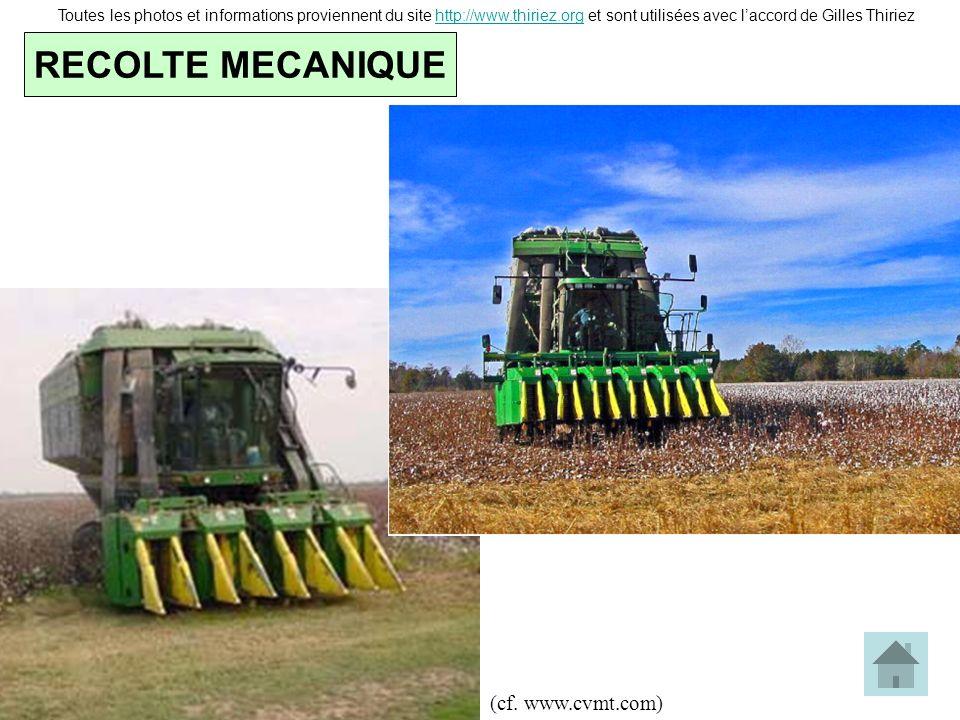 RECOLTE MECANIQUE (cf. www.cvmt.com)