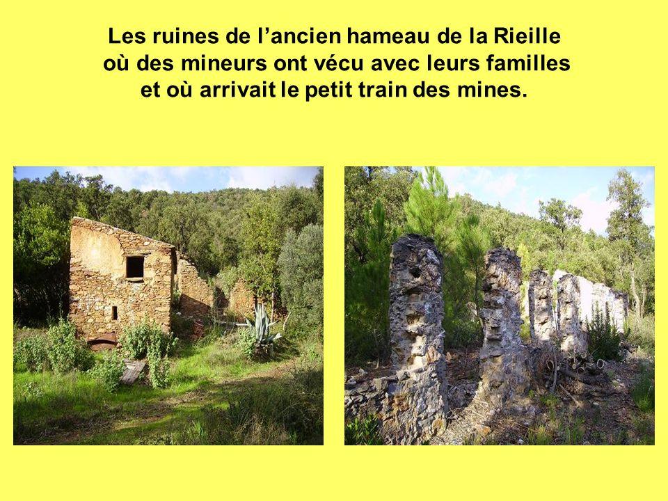 Les ruines de l'ancien hameau de la Rieille où des mineurs ont vécu avec leurs familles et où arrivait le petit train des mines.