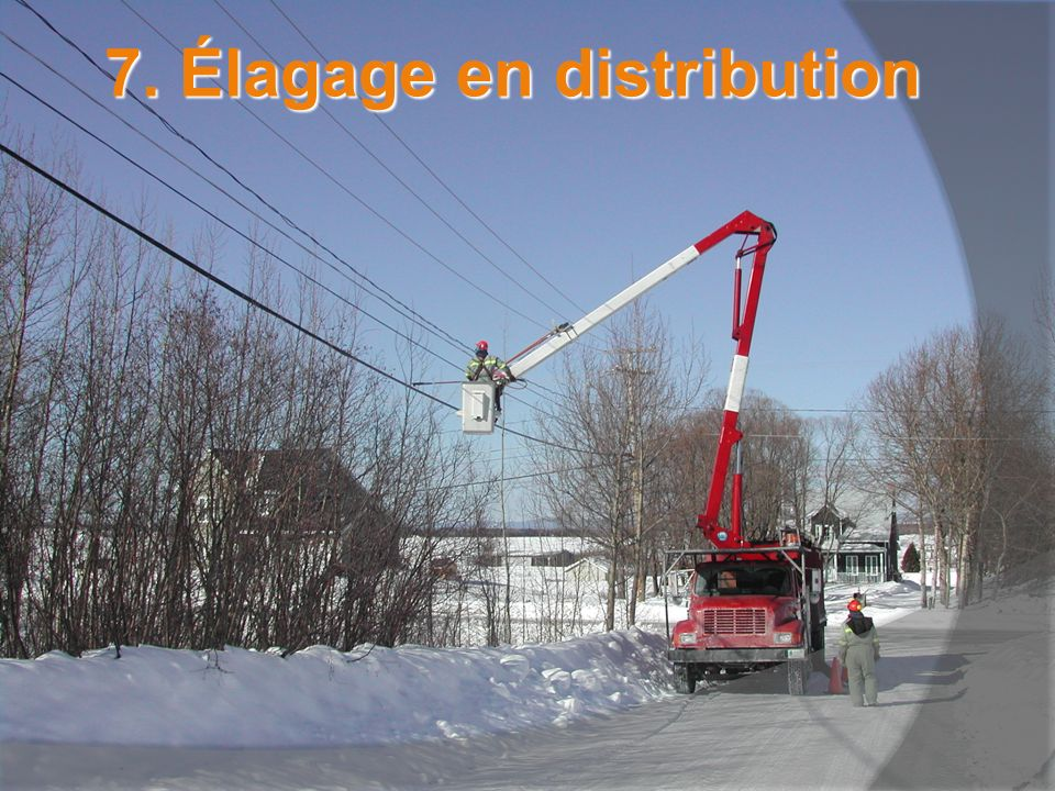 7. Élagage en distribution