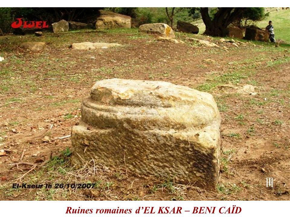Ruines romaines d'EL KSAR – BENI CAÏD