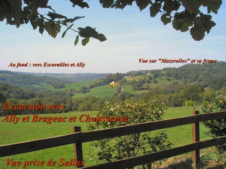 Excursion vers Ally et Brageac et Chaussenac