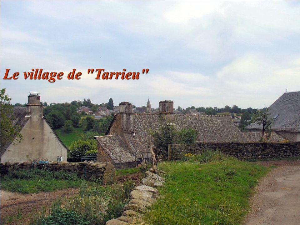 Le village de Tarrieu