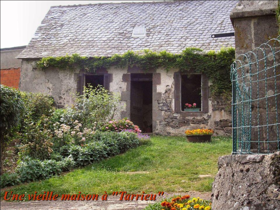Une vieille maison à Tarrieu