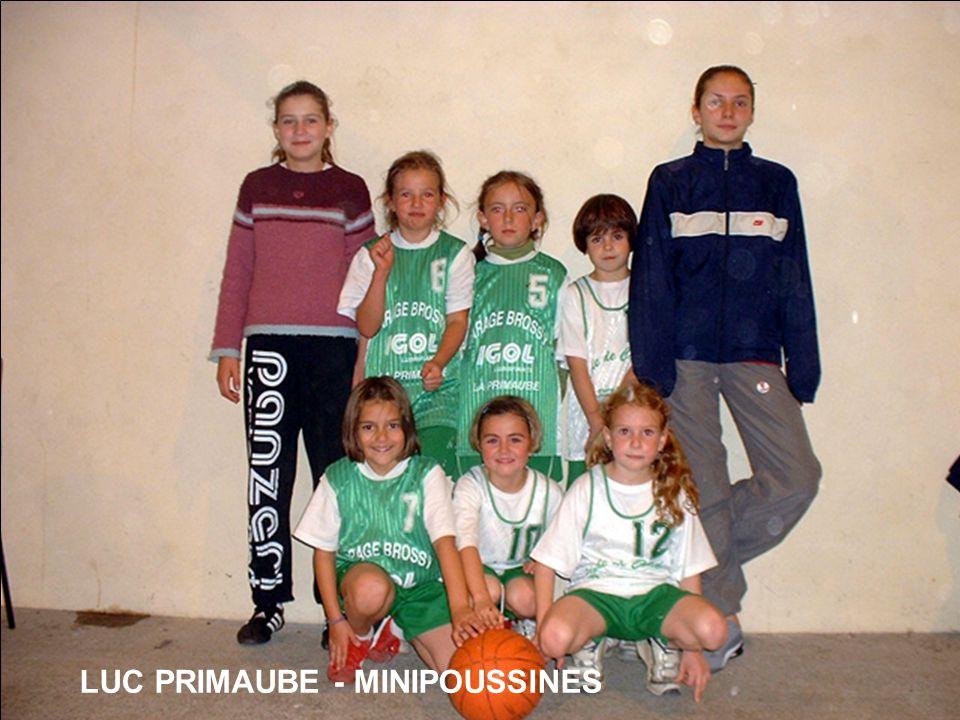LUC PRIMAUBE - MINIPOUSSINES