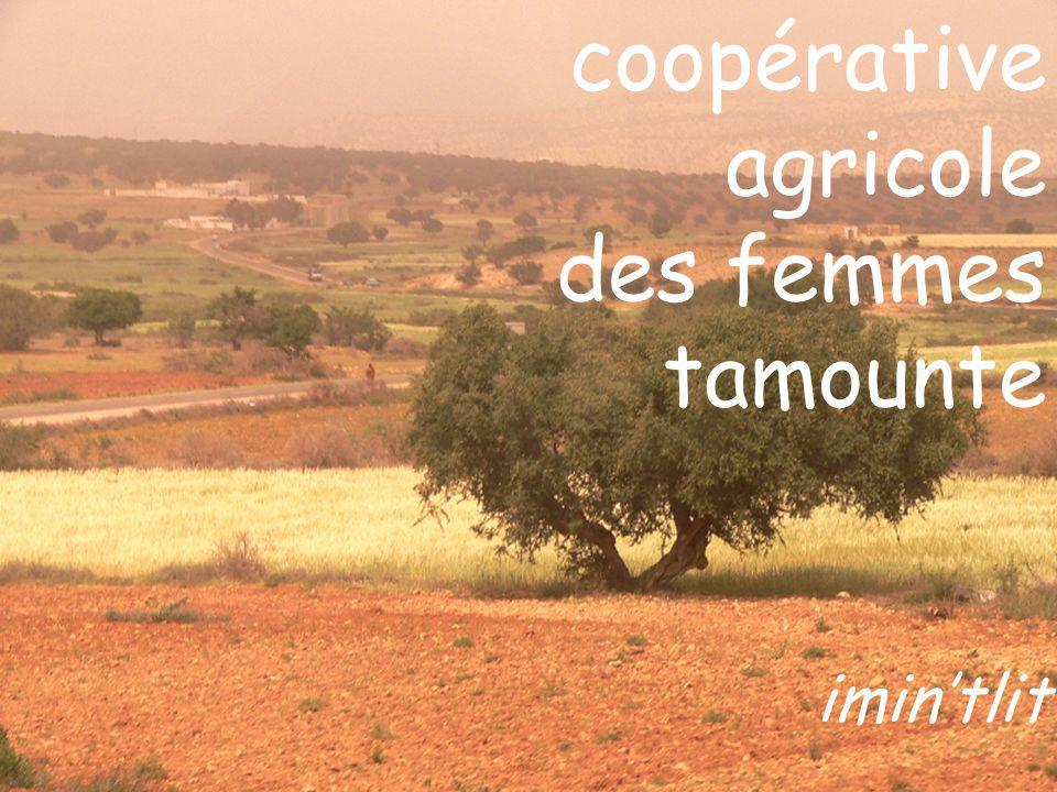 coopérative agricole des femmes tamounte imin'tlit