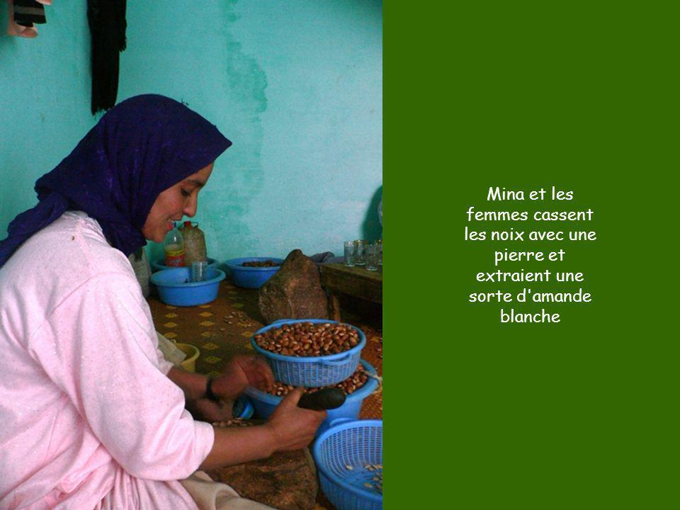 Mina et les femmes cassent les noix avec une pierre et extraient une sorte d amande blanche