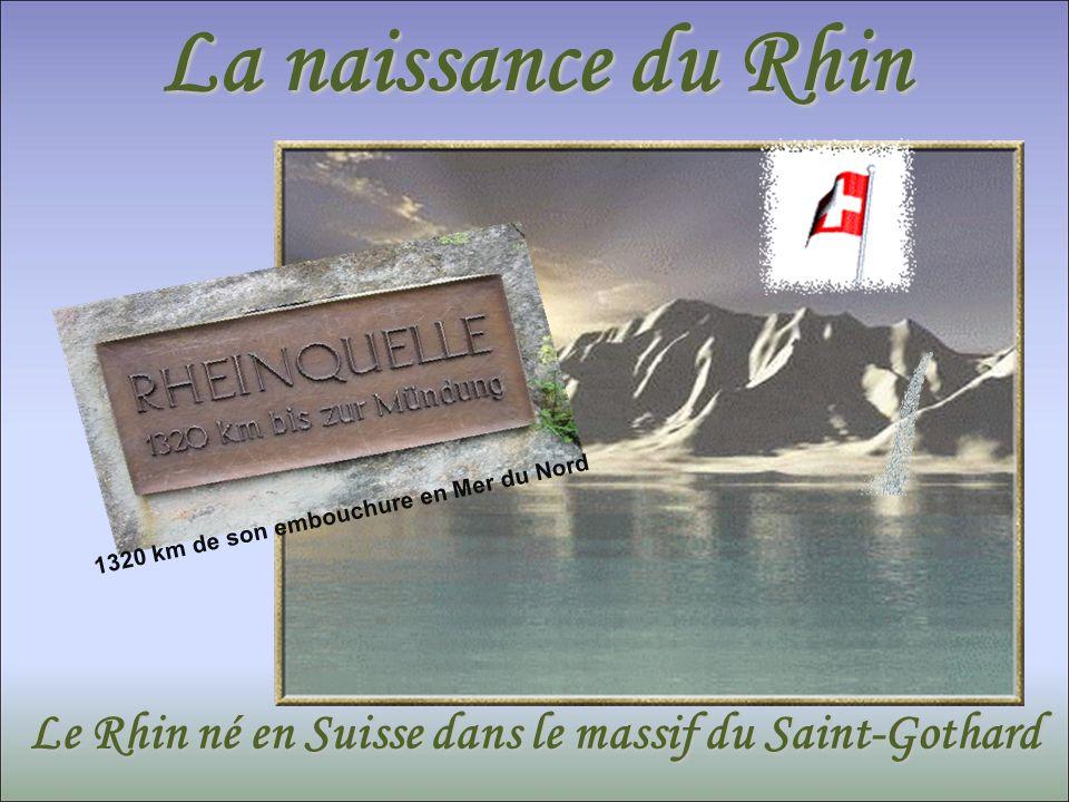 La naissance du Rhin 1320 km de son embouchure en Mer du Nord. Le Rhin né en Suisse dans le massif du Saint-Gothard.