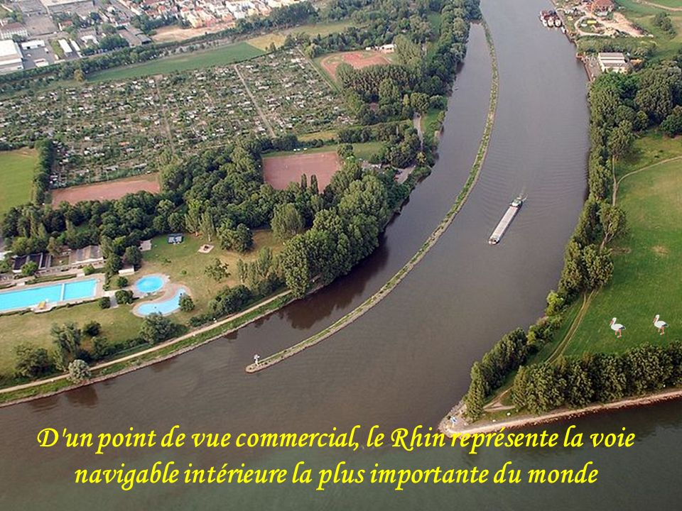 D un point de vue commercial, le Rhin représente la voie navigable intérieure la plus importante du monde