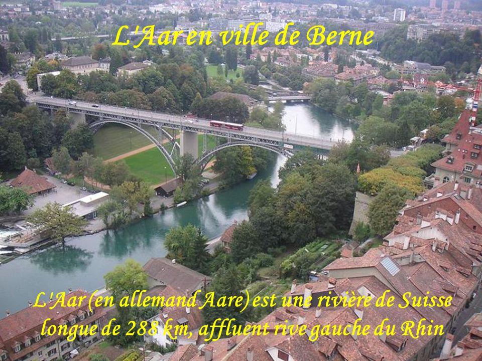 L Aar en ville de BerneL Aar (en allemand Aare) est une rivière de Suisse longue de 288 km, affluent rive gauche du Rhin.