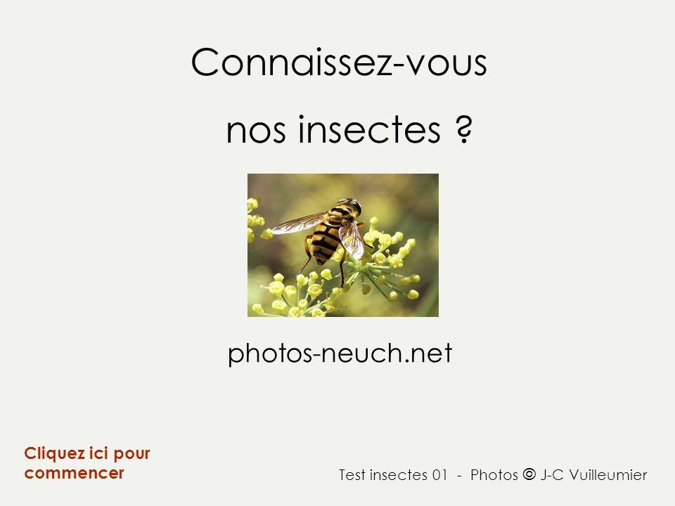 Connaissez-vous nos insectes photos-neuch.net