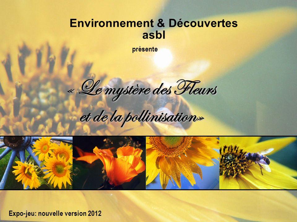 « Le mystère des Fleurs et de la pollinisation»