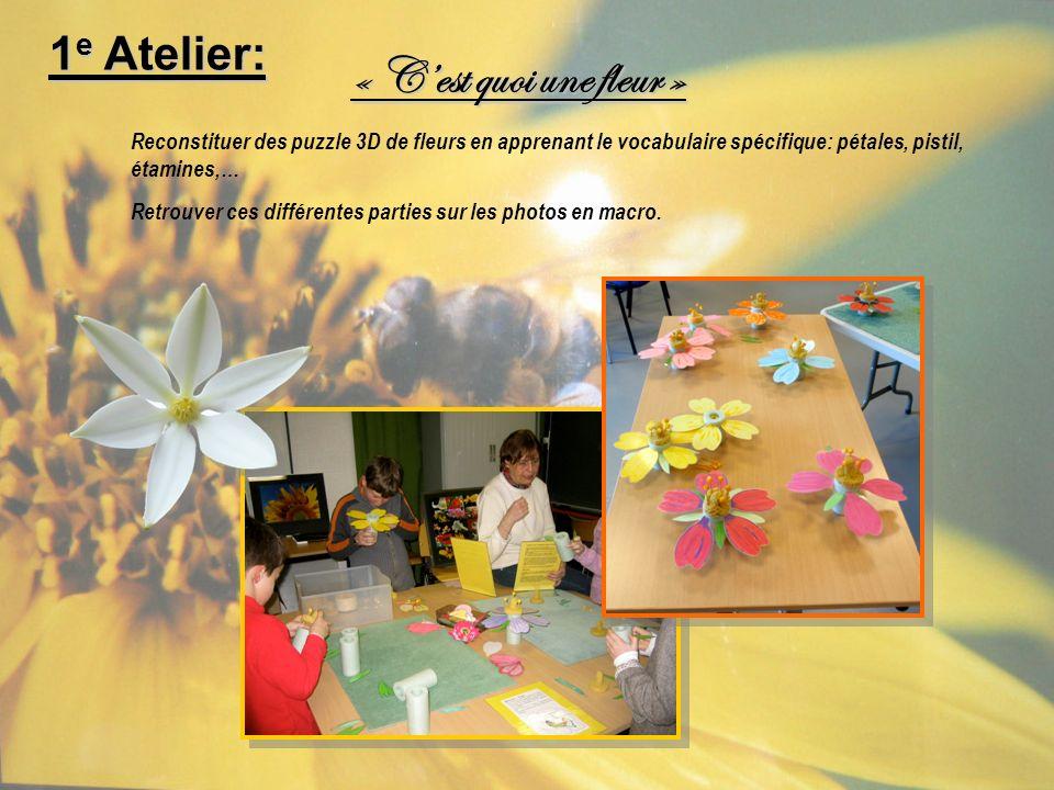 « C'est quoi une fleur » 1e Atelier: