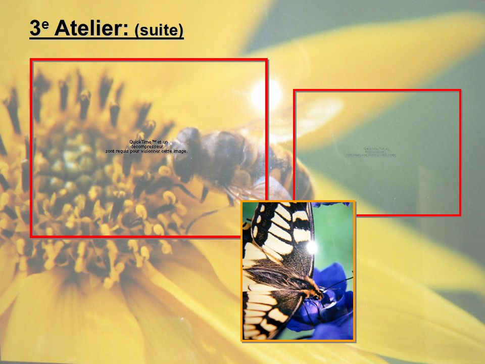 3e Atelier: (suite)