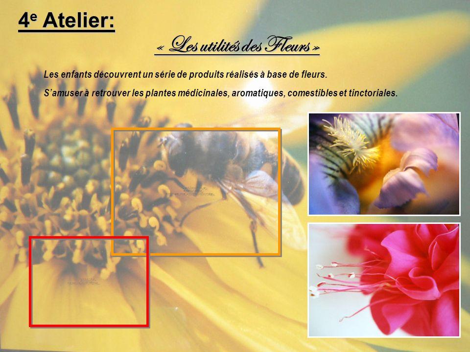 « Les utilités des Fleurs »