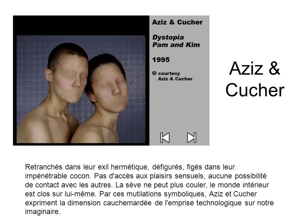 Aziz & Cucher
