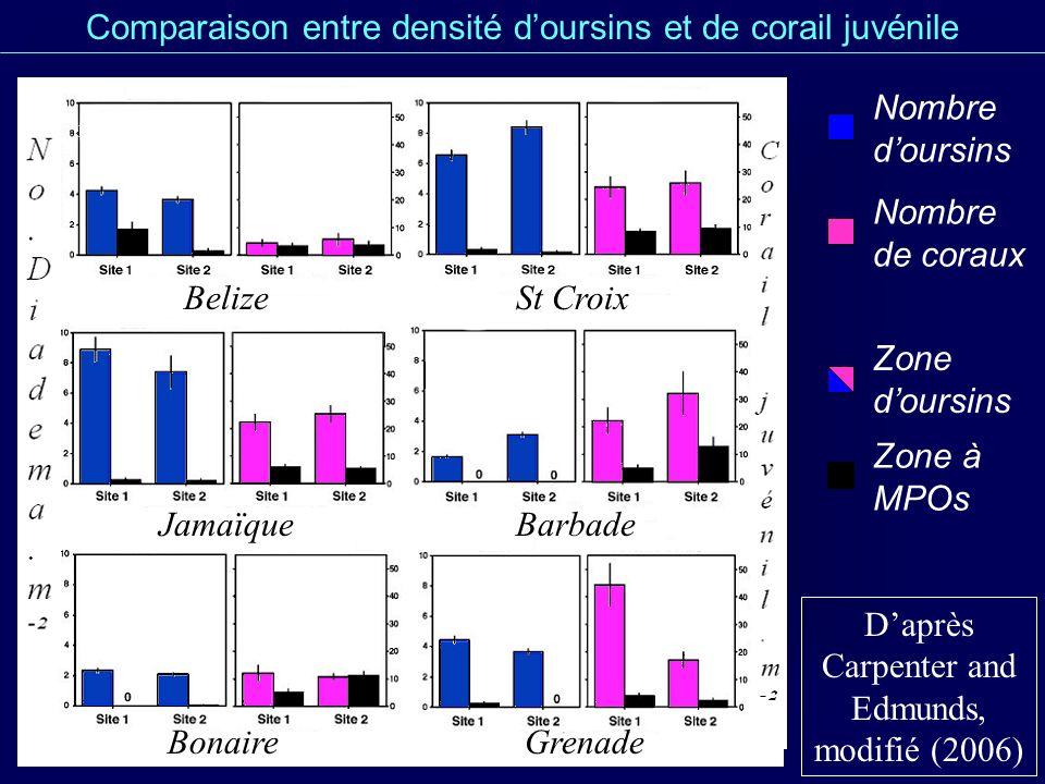 Comparaison entre densité d'oursins et de corail juvénile