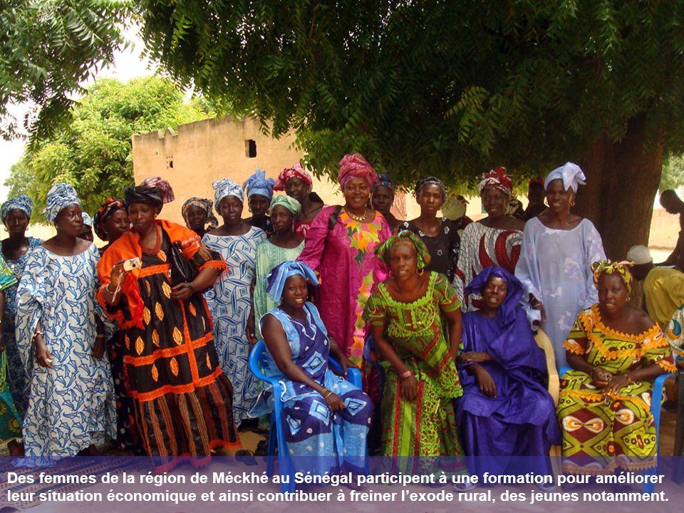 Des femmes de la région de Méckhé au Sénégal participent à une formation pour améliorer leur situation économique et ainsi contribuer à freiner l'exode rural, des jeunes notamment.
