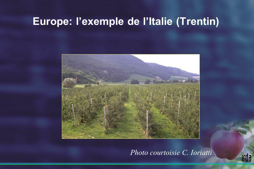 Europe: l'exemple de l'Italie (Trentin)