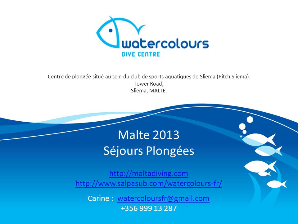 Carine : watercoloursfr@gmail.com