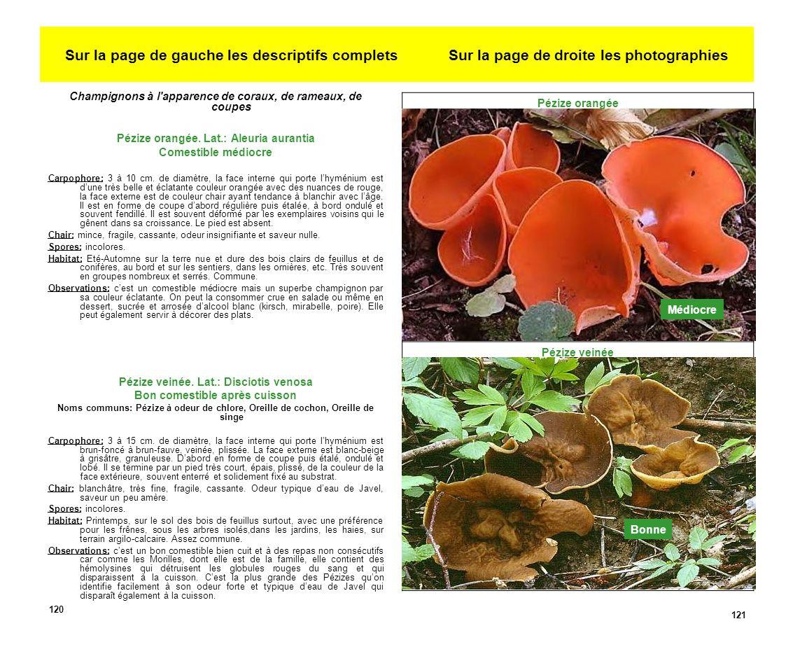 Sur la page de gauche les descriptifs complets Sur la page de droite les photographies