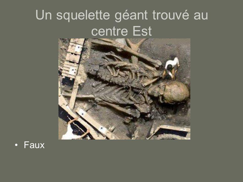 Un squelette géant trouvé au centre Est