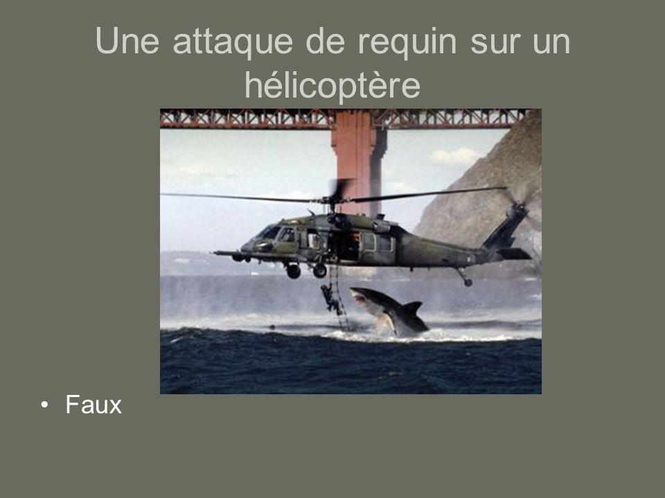 Une attaque de requin sur un hélicoptère