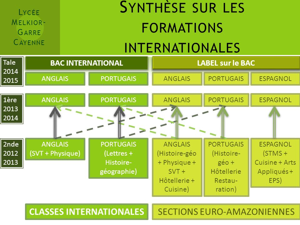 Synthèse sur les formations internationales