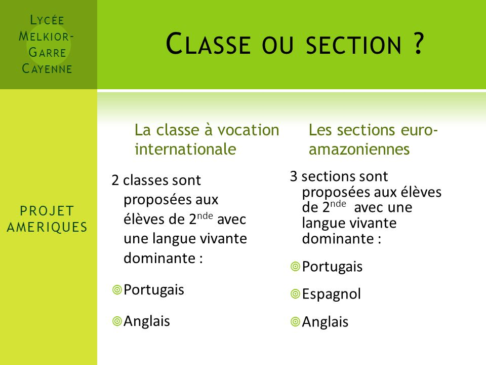 Classe ou section La classe à vocation internationale