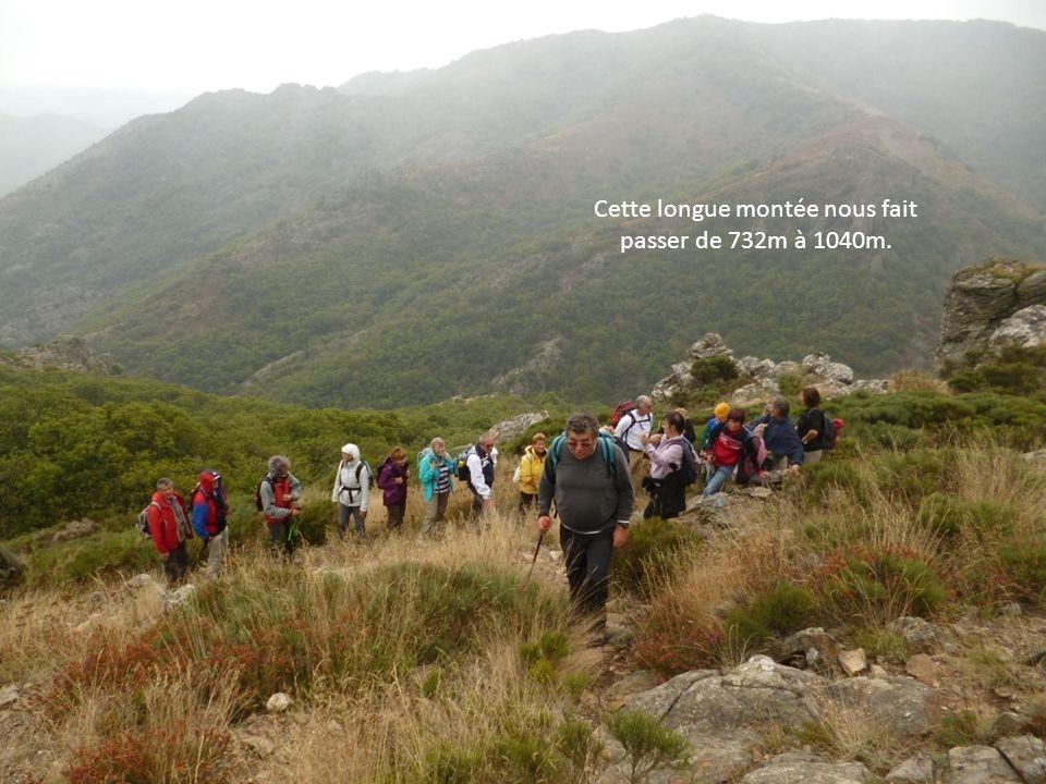 Cette longue montée nous fait passer de 732m à 1040m.