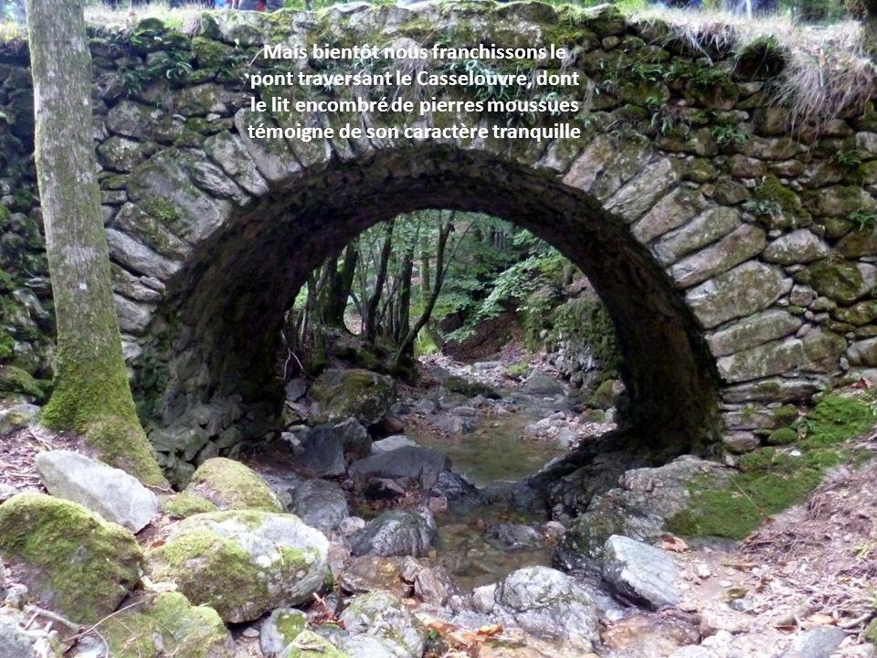 Mais bientôt nous franchissons le pont traversant le Casselouvre, dont le lit encombré de pierres moussues témoigne de son caractère tranquille