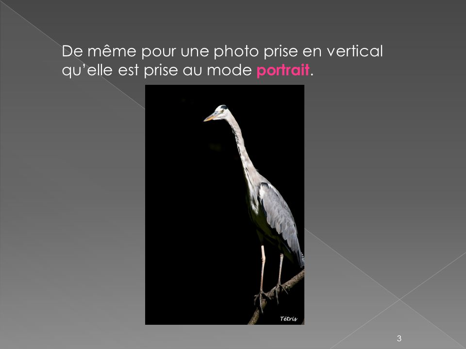 De même pour une photo prise en vertical qu'elle est prise au mode portrait.