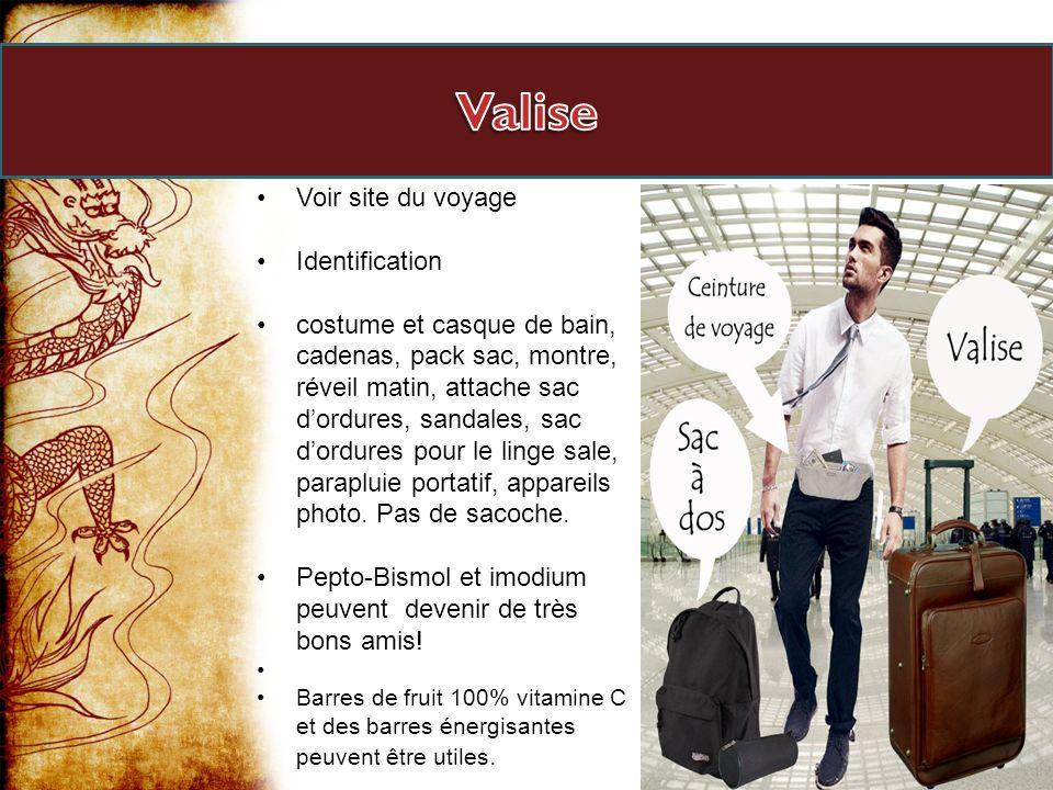 Valise Voir site du voyage Identification