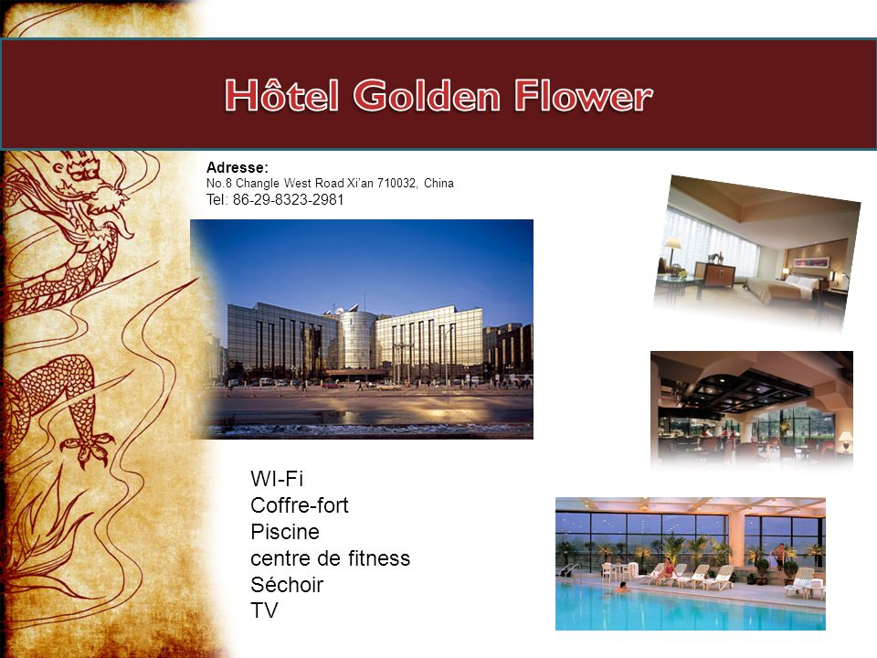 Hôtel Golden Flower WI-Fi Coffre-fort Piscine centre de fitness