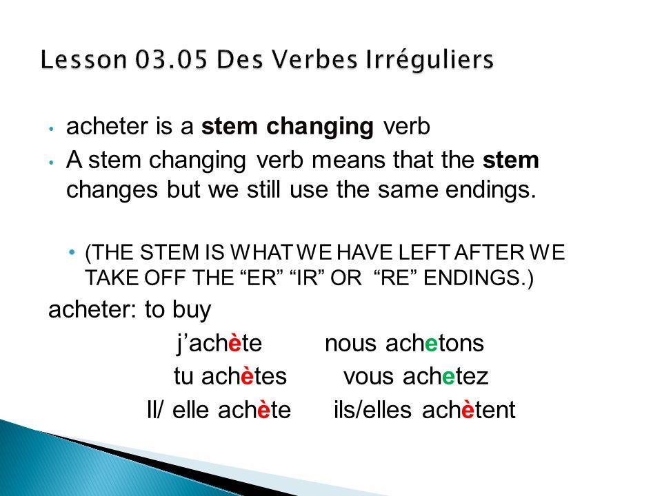 Lesson 03.05 Des Verbes Irréguliers