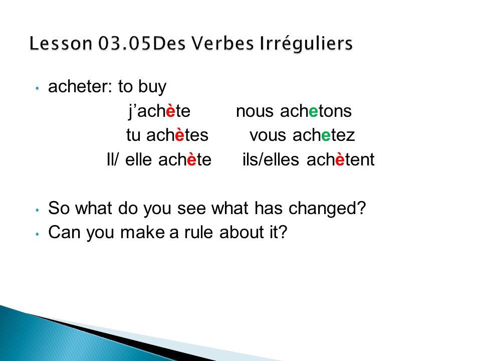 Lesson 03.05Des Verbes Irréguliers