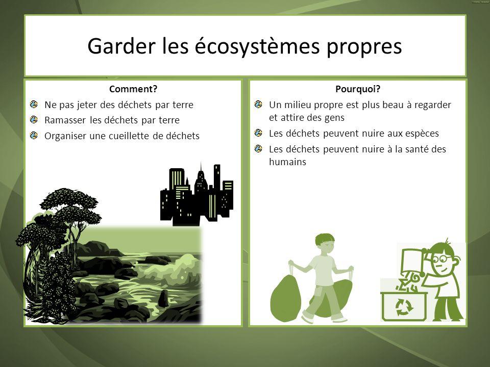 Garder les écosystèmes propres