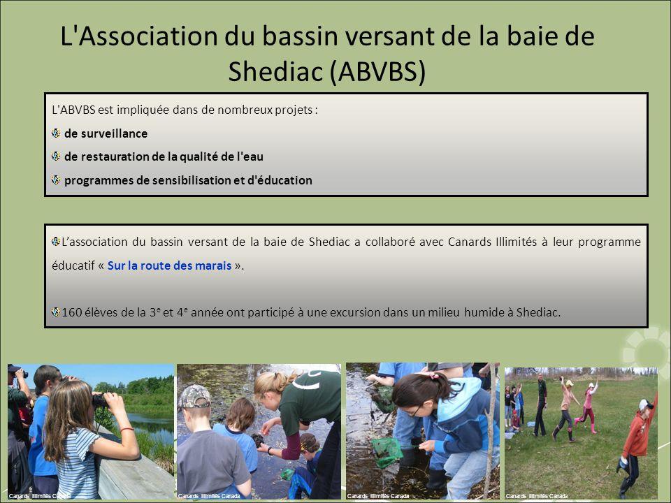L Association du bassin versant de la baie de Shediac (ABVBS)
