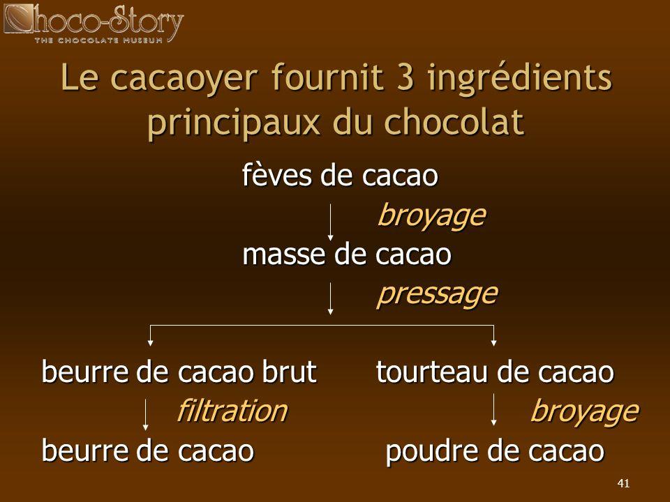 Le cacaoyer fournit 3 ingrédients principaux du chocolat