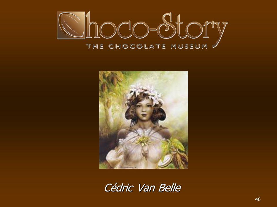 Cédric Van Belle