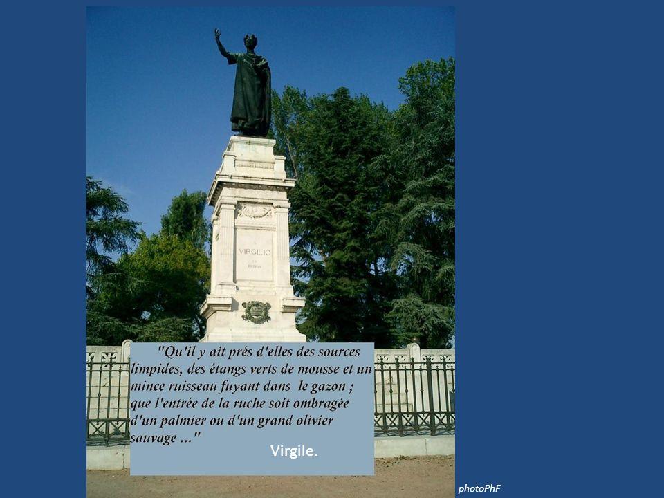 Virgile. photoPhF