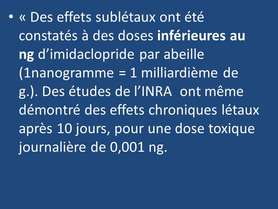 « Des effets sublétaux ont été constatés à des doses inférieures au ng d'imidaclopride par abeille (1nanogramme = 1 milliardième de g.).