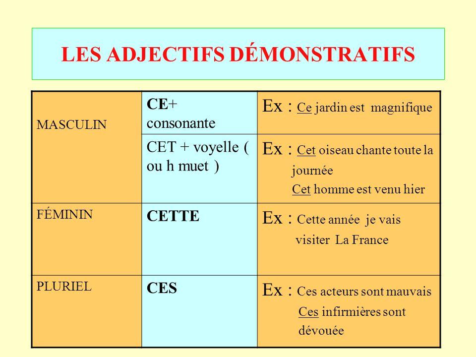 LES+ADJECTIFS+D%C3%89MONSTRATIFS.jpg
