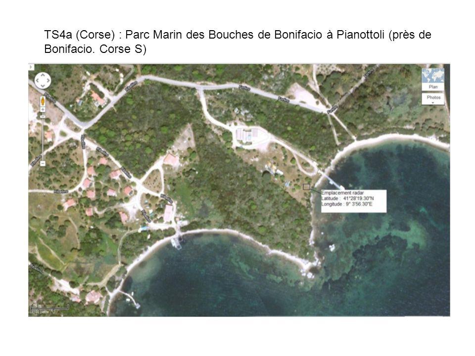 TS4a (Corse) : Parc Marin des Bouches de Bonifacio à Pianottoli (près de Bonifacio. Corse S)