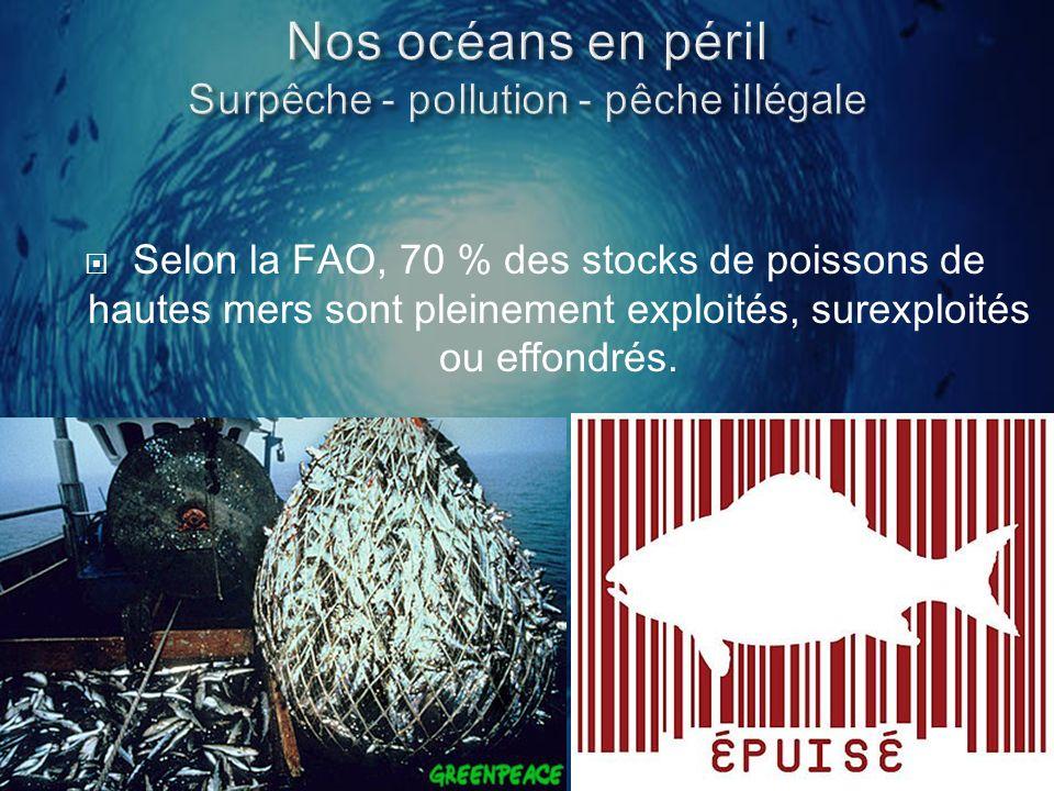 Nos océans en péril Surpêche - pollution - pêche illégale