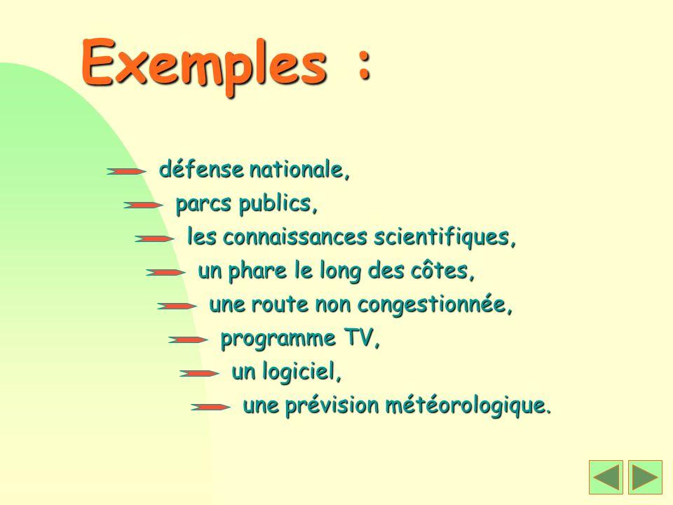 Exemples : défense nationale, parcs publics,