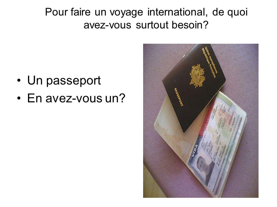 Pour faire un voyage international, de quoi avez-vous surtout besoin
