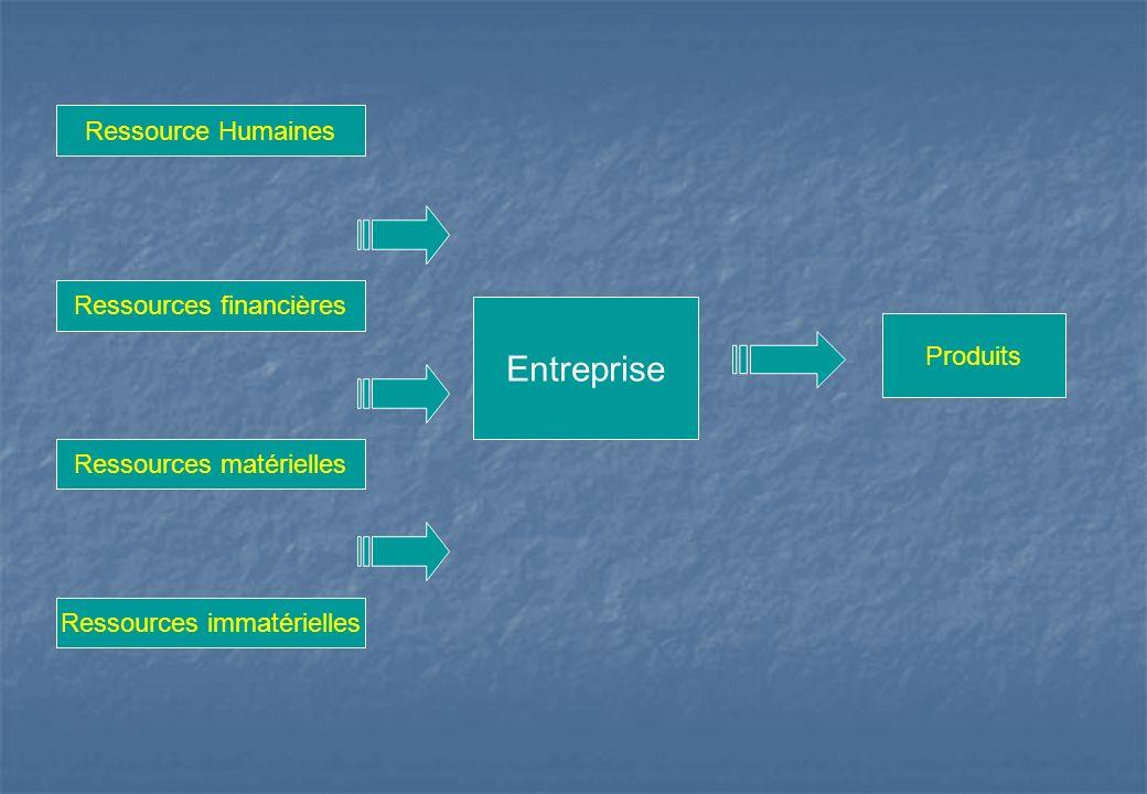 Entreprise Ressource Humaines Ressources financières Produits