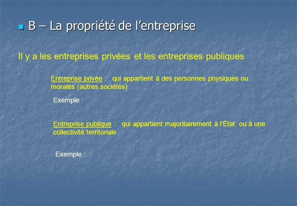 B – La propriété de l'entreprise