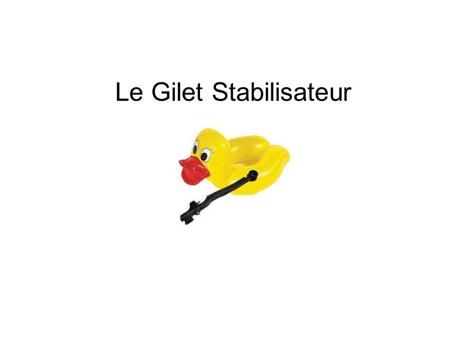 Le Gilet Stabilisateur