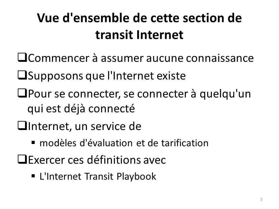 Vue d ensemble de cette section de transit Internet